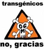 notransgenicos