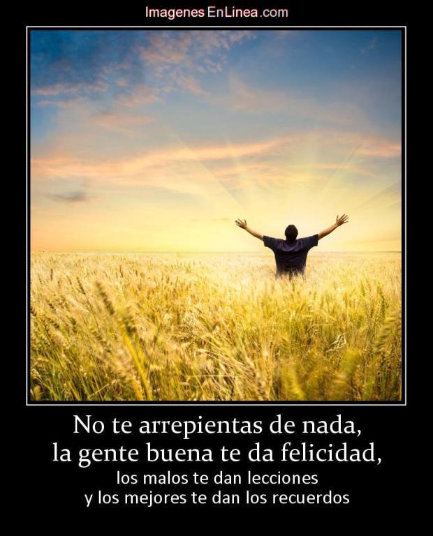 felicidad5falaz