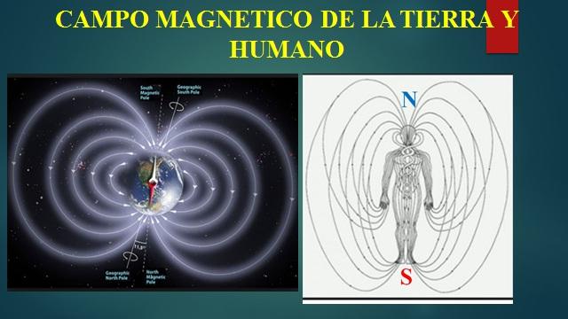 Campo magnetico humano movimiento por la verdad for Sistema anticalcare magnetico
